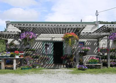 breezy-acres-garden-center