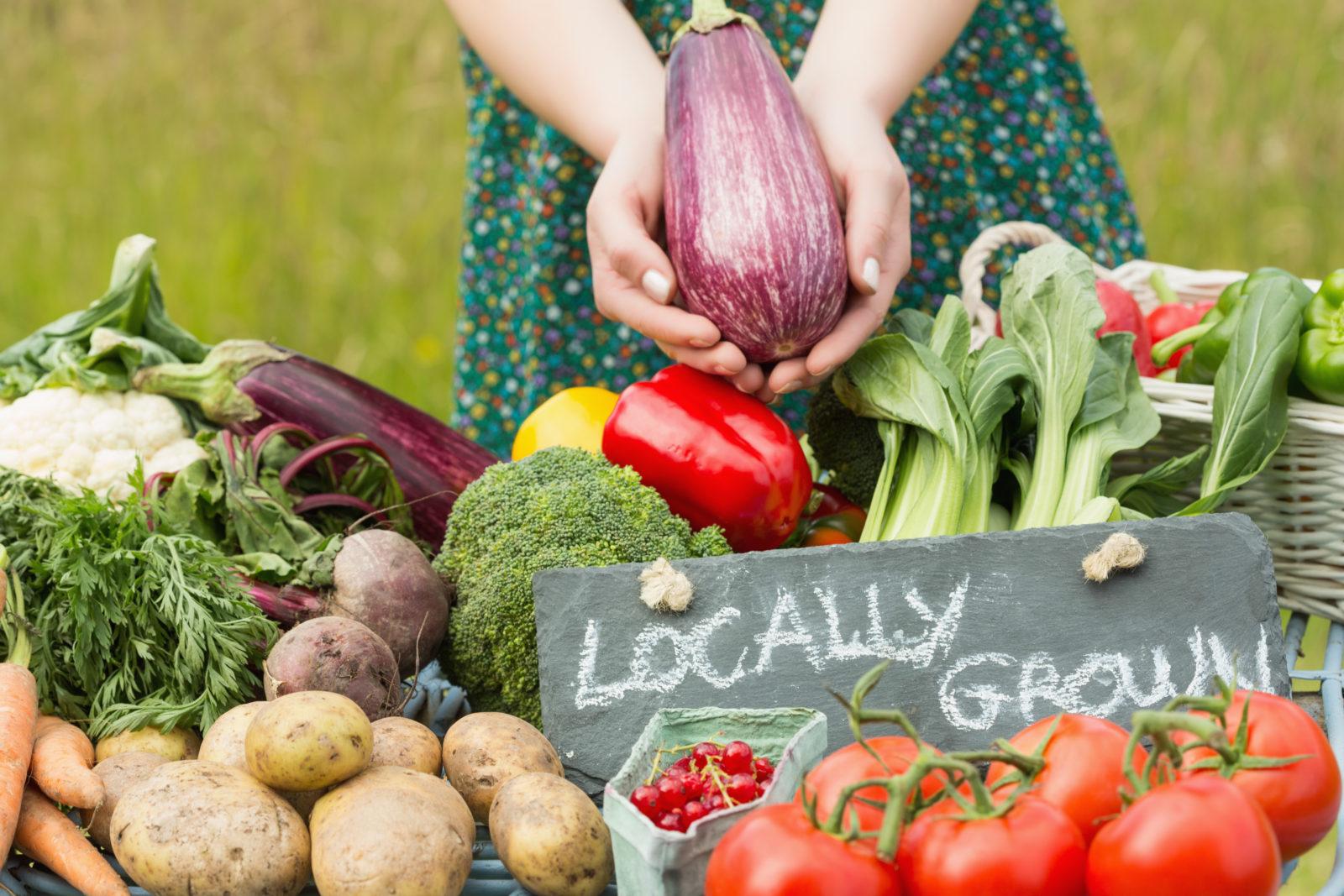 Harvest Festival – Vendors Wanted!